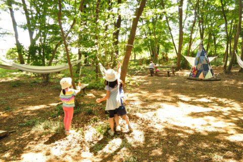 きたもと緑の森めぐり まちの雑木林エリア