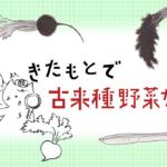 『ライター棚澤明子さんに教わる、聞き書きと色々なこと』