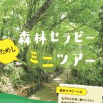 【募集】森林セラピーおためし!ミニツアー